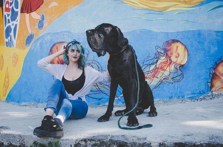 Razas de perros peligrosos: Mastín Napolitano